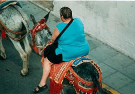 Burros Taxis 2