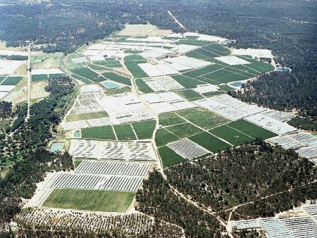 agricultura_donana_confederacion_hidrografica_del_guadalquivir_84798