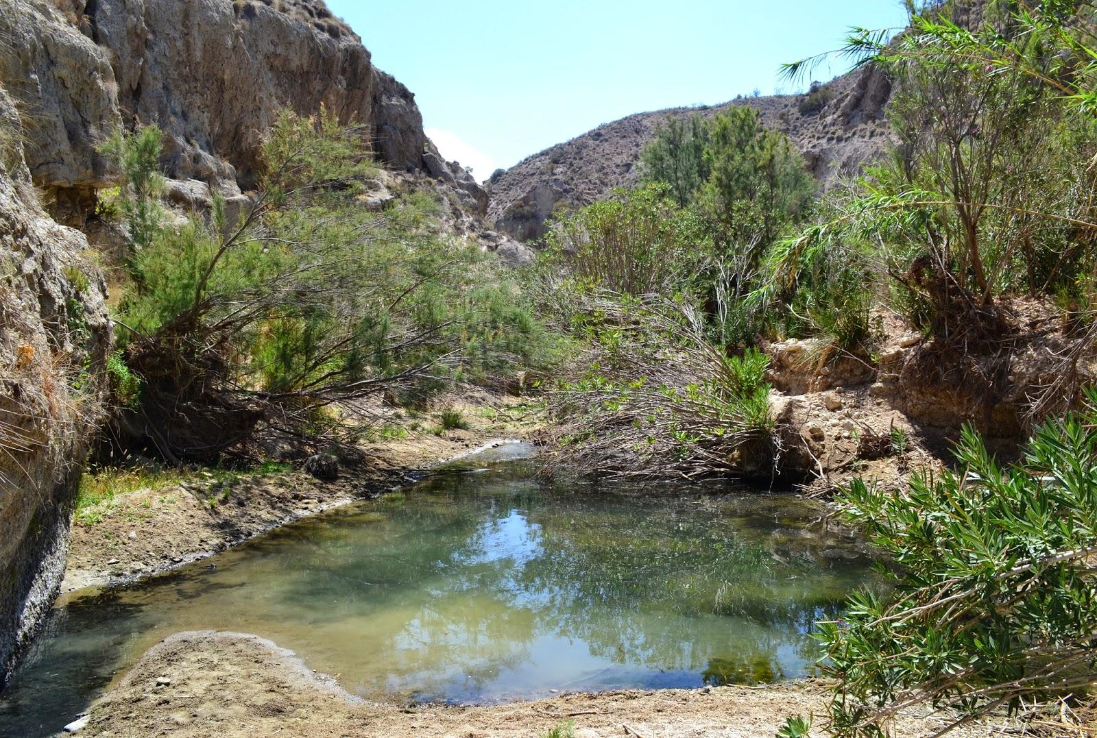 https://laotraandalucia.org/wp-content/uploads/2018/03/almer%C3%ADa-rio-aguas.jpg